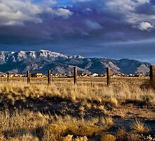 Early Evening Light Along the Sandia's by John  De Bord Photography