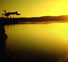 Dive by Dan Jesperson