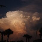 Tropical Storm by MMerritt