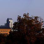 View from Lemon Hill by Al Camardella Jr.