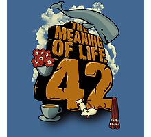 The Meaning of Life Photographic Print