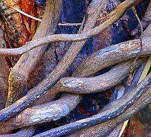 Limbs Entwined by Lynda Kerr