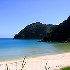 Abel Tasman's Beatiful Beaches by SinaStraub