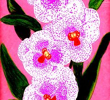 Spotted Orchid Against A Pink Wall by Carliss Mora