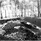 The Bench by Robert Drobek
