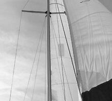 B&W Sails #1 by Alex Wagner