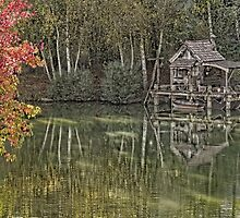 Hut of fisherman in autumn  by numgallery