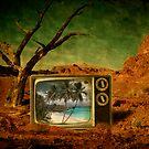 The sun always shines on TV by Kurt  Tutschek
