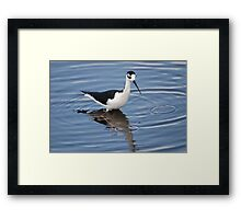 Stilts Run Deep Framed Print