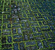 Labyrinth by Josh Myers