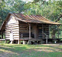 Country Folks Cabin by RickDavis