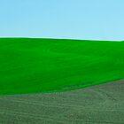 Fields of Tuscany by Andriy Portyanko