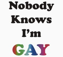 Nobody Knows I'm Gay by Chris  Bradshaw