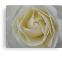 Cream Swirl - JUSTART © Canvas Print