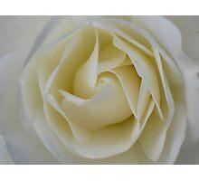 Cream Swirl - JUSTART © Photographic Print