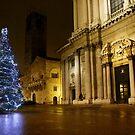 Waiting for Christmas by annalisa bianchetti