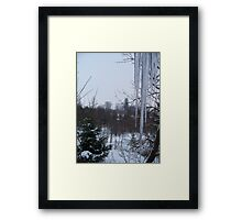 February Icicles Framed Print