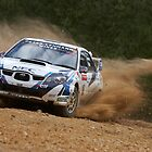 Rally SA 2007 #1 by Adam Rachwal