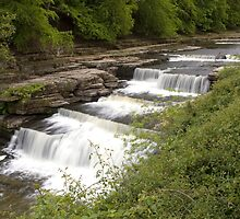 Aysgarth Lower Falls by Peter Reid