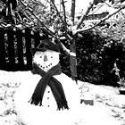 Stephanie the SnowMan by IronHead42