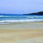 Beach, New Zealand by Emma Close
