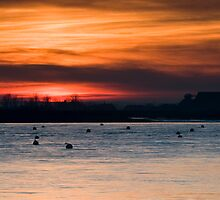 Burnham Sunset  by WillOakley
