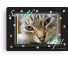 Save a life... Adopt: The New Golden Rule Canvas Print