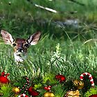 Speaking Fawnley ~ Merry Christmas by Penny Odom