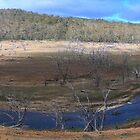 Eucumbene River, NSW Australia.  by WhitCanberra