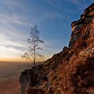 Life on the Edge by Tom Black