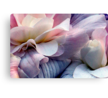 Just Takes Two...Beautiful Begonias Canvas Print