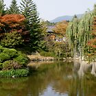 Reflection Pond at Pulgulska Temple-South Korea by Debbie Montgomery
