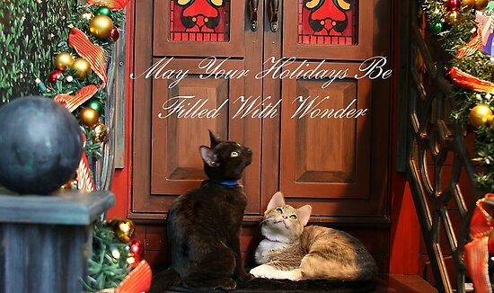 Christmas Wonder Card with Text by Barbara  Brown
