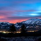 Mammoth at Night by Cat Connor