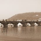 Sepia Prague St Charles Bridge by Darren Bell