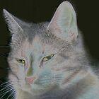 Feline Mom by whippedmama