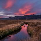 Upper Owens River Sunset by Cat Connor