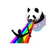 Panda stop gunner Photographic Print