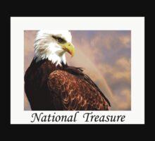 National Treasure by Varinia   - Globalphotos