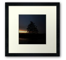 0089 - HDR Panorama - Sunfall Tree Framed Print