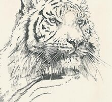 Nakita the Tigress by BarbBarcikKeith