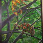 chameleons by Skylur Wadowick
