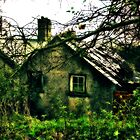 Autumn Cottage by David  MacCallum-Price