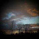 February Sunset (2) by lareejc