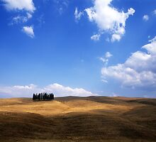 Tuscan Hillside  by Andrew Bret Wallis