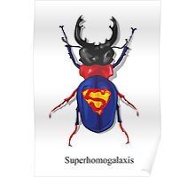 Superhomogalaxis AKA Super Bug Poster