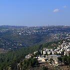 Overlooking Jerusalem by Neta Bartal