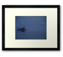 Desert Atoll II Framed Print