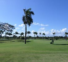 Golf Course In Punta Cana by kkphoto1