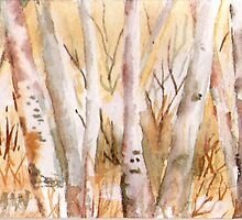 """Birch Stand"" by Marsha Woods"